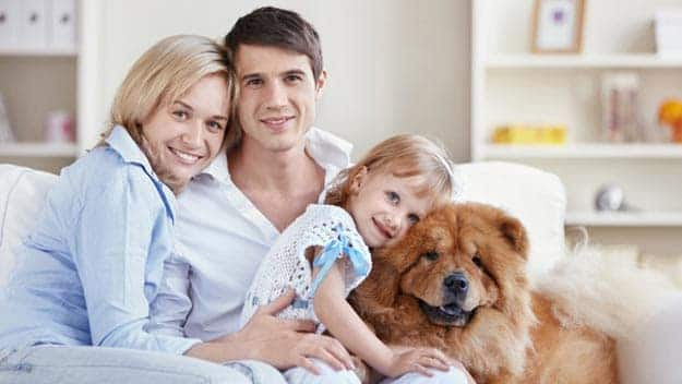 Wills & Trusts dog-young-family Direct Wills Ellesmere Port